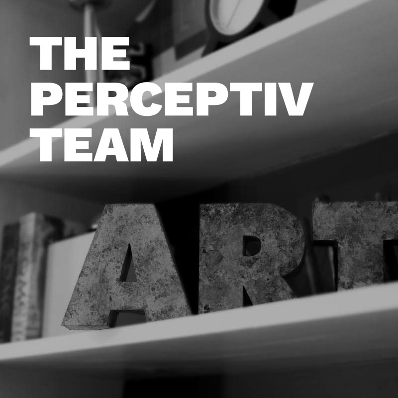 The Perceptiv Team